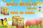 夏季高温猪食欲下降如何提高猪食欲